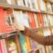 みんなは欲しい本をどこで買う?近所の書店かネット書店、それとも?